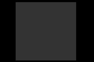 Miami Film Festival logo